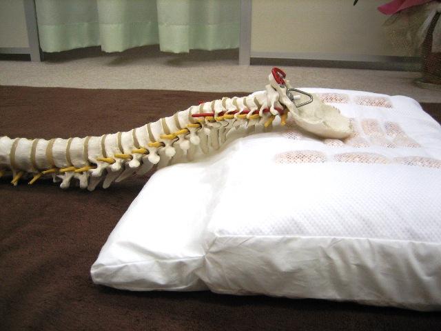 施療院内でも好評のザブピローは、施術の中で生まれた安眠健康枕です。