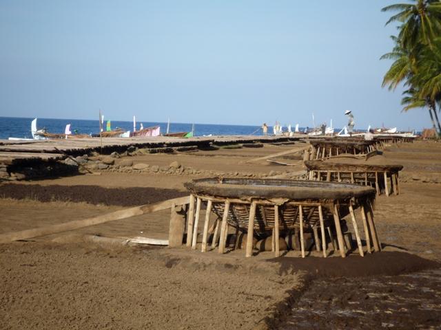 バリ島伝統の揚げ浜式塩田 天日塩ができます。